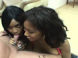 Two slutty black chicks blow a big white dick and share its hot juices